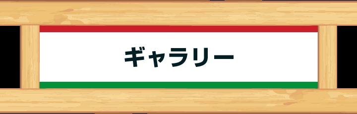 お店のこだわり|ファミリーイタリアン ガスパロ 〜幸せを運ぶヨウム店〜